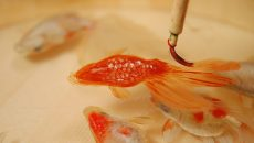 2.5Dに世界を創った金魚絵師 :深堀 隆介